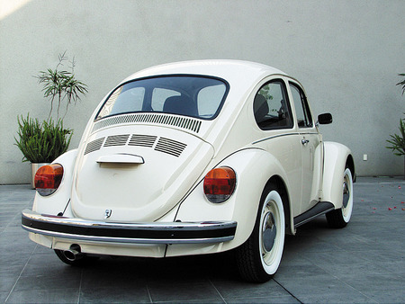 """Beetle"", ""Last generation"". View from behind. 