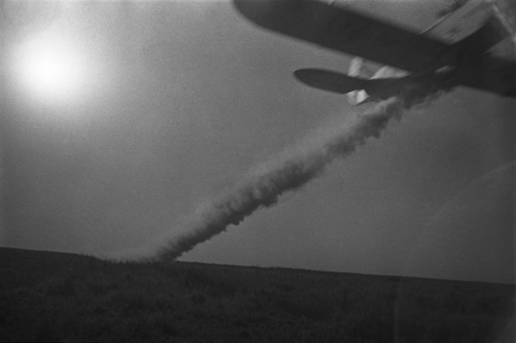 Arkadiy Shaikhet.