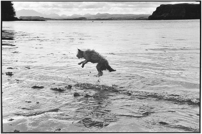 Elliott Erwitt.