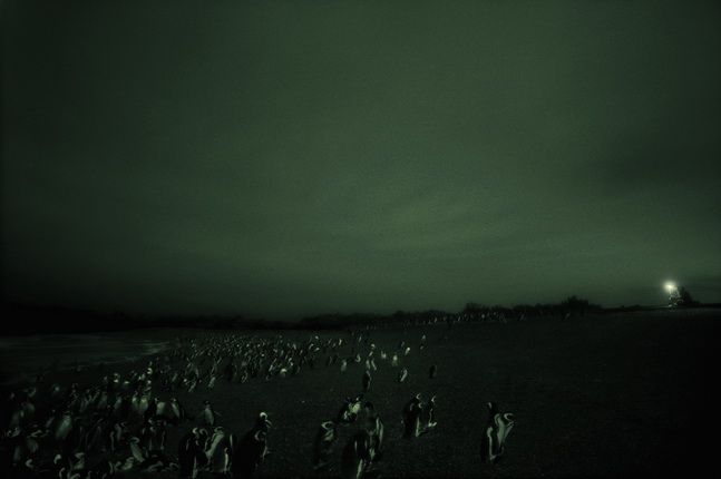 Philippe Parreno.