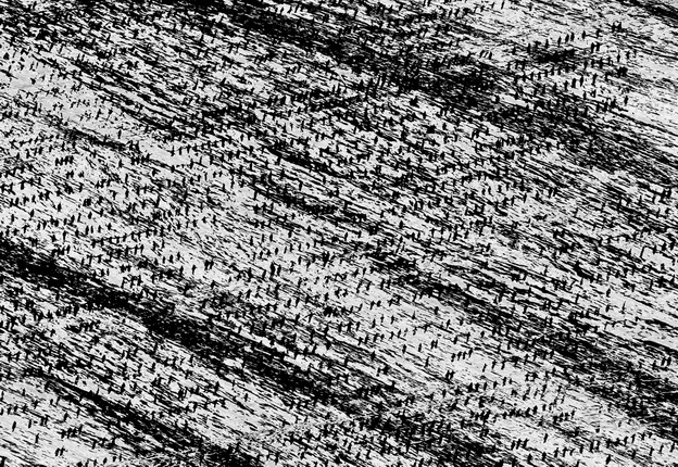 Michal Rovner.