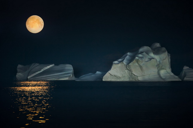 Sergey Anisimov.