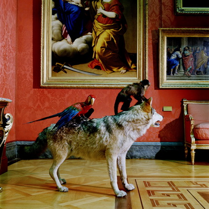 Karen Knorr.