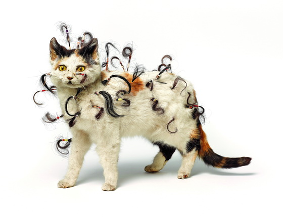 Colin Lowe.