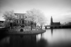 Invisible worldInfrared photography