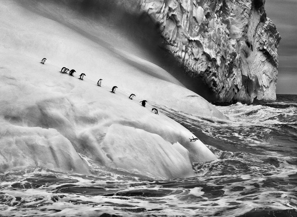 South Sandwich Islands. 