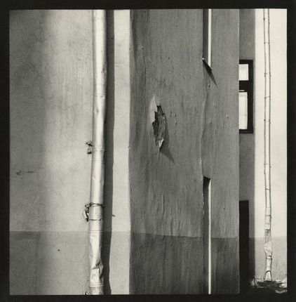 Alexander Lapin.