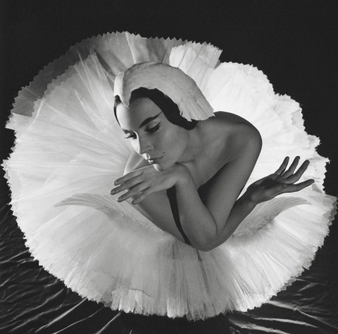 World ballet stars in the lens of the legendary Serge Lido. 1930-1980s