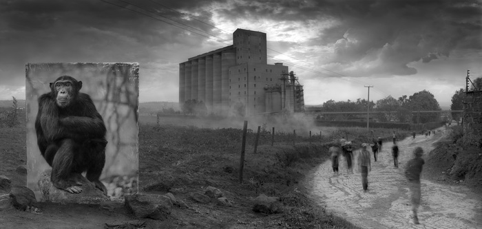 Nick Brandt.