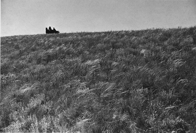 Mikhail Prehner. In the steppe. For the book