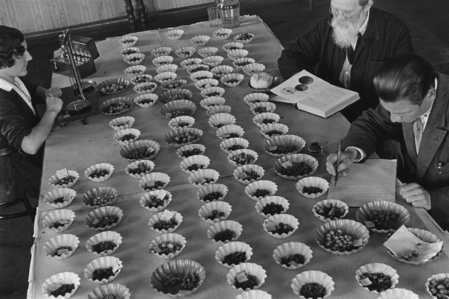 Mikhail Prehner. Institute of plant growing. Leningrad, the 1930s.